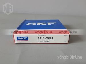 Vòng bi SKF 6213-2RS1
