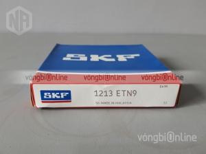 Vòng bi SKF 1213 ETN9