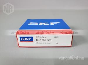 Vòng bi SKF NUP 305 ECP