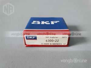 Vòng bi SKF 6300-2Z