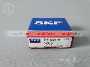 Vòng bi SKF 6203